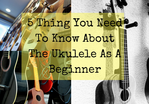 5 Thing You Need To Know About The Ukulele As A Beginner